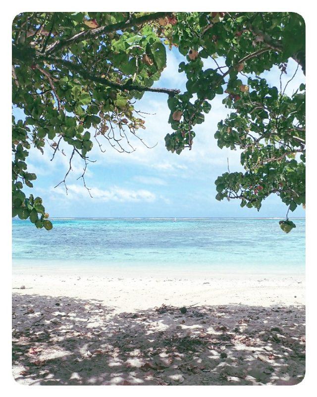 stranden rarotonga