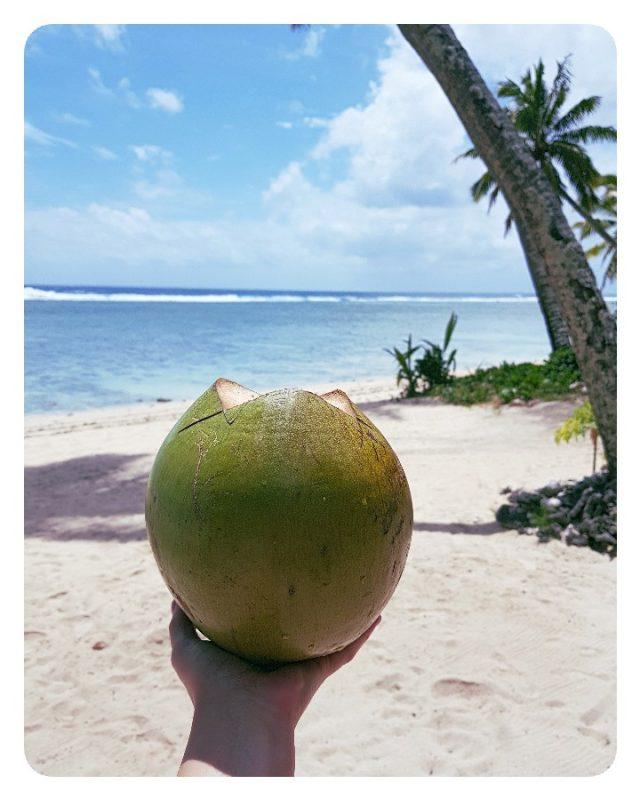 kokosnoot rarotonga