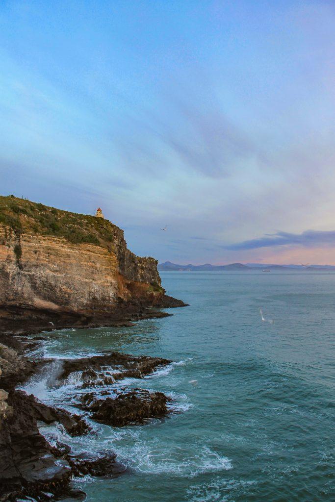 otago peninsula nieuw zeeland