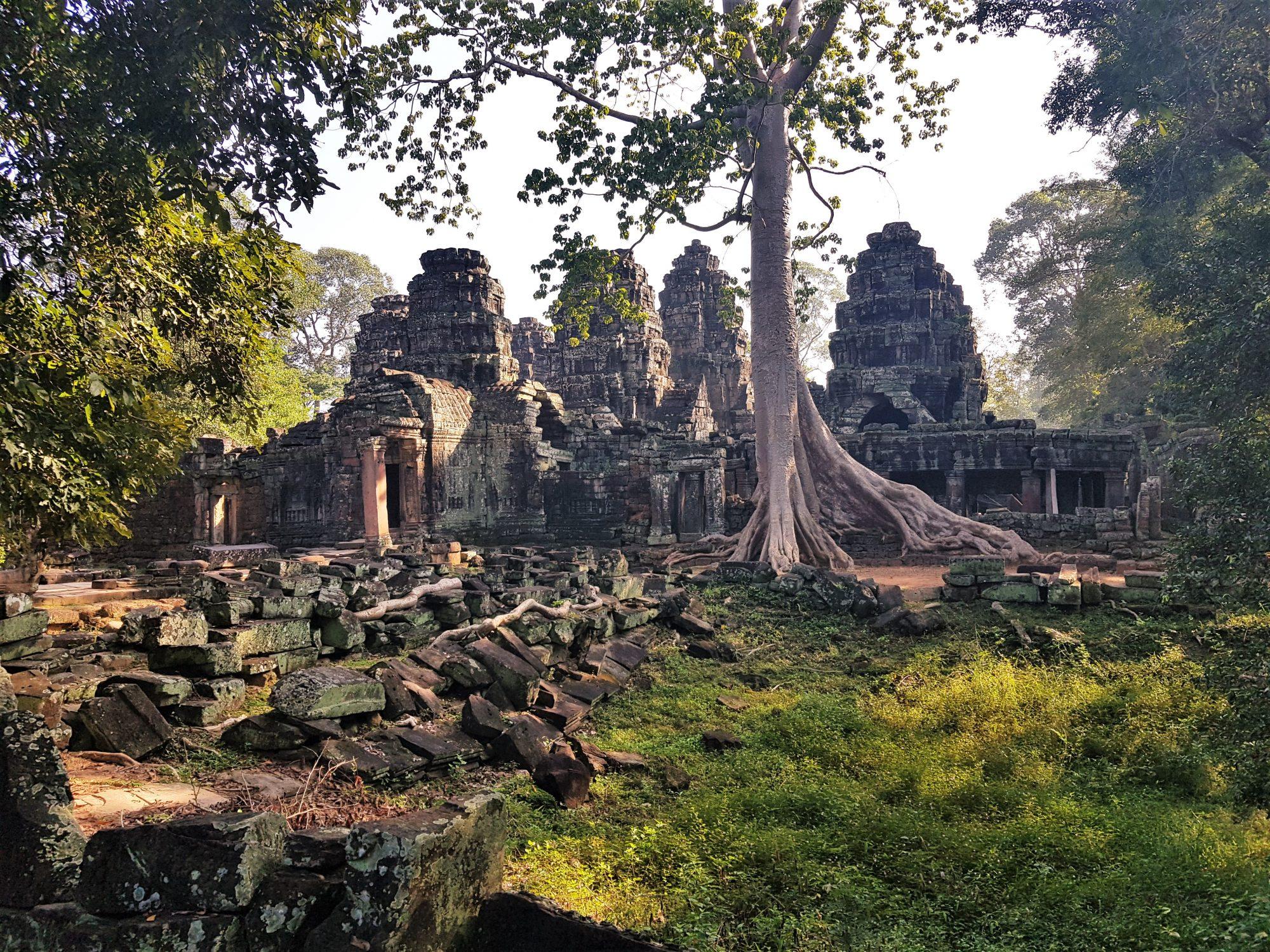 Ta Prohm tombraider tempel