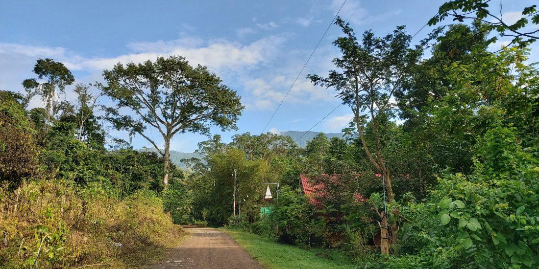 Onze straat Costa Rica