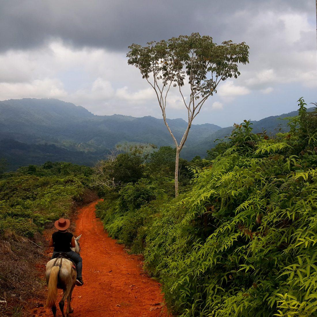 Platteland Costa Rica